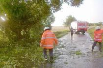 Členové SDH Horšovský Týn odstraňují padlé větve.