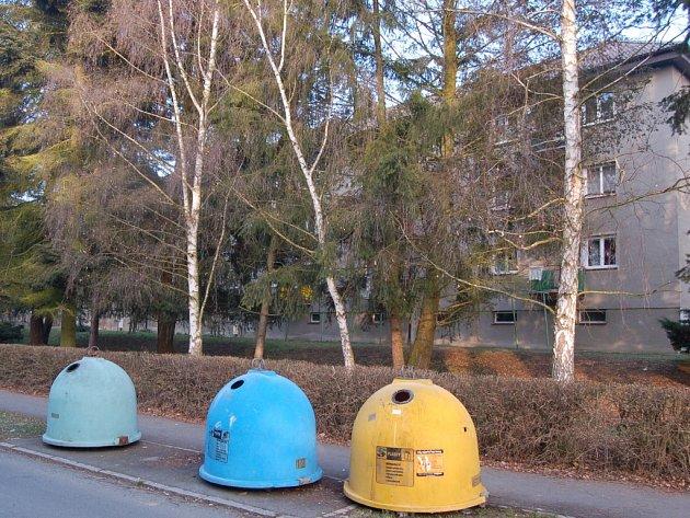 Pryč přijdou některé stromy ve Vojtěchově ulici. Budou za ně vysazeny náhradní dřeviny.