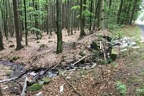 Eternit poházený v lese a potoce poblíž obce Díly.