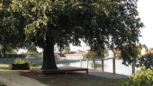 Strom u dětského hřiště v Draženově poskytuje příjemný stín, cestička zase láká k procházkám okolo rybníka.