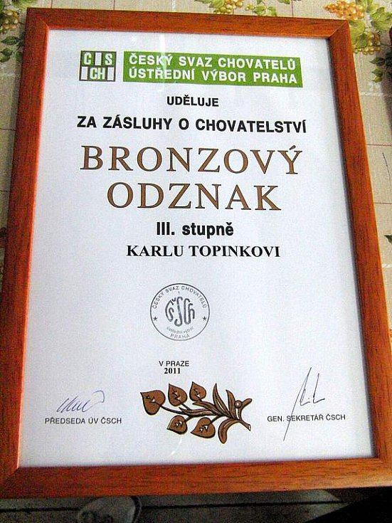 Ocenění pro Karla Topinku.