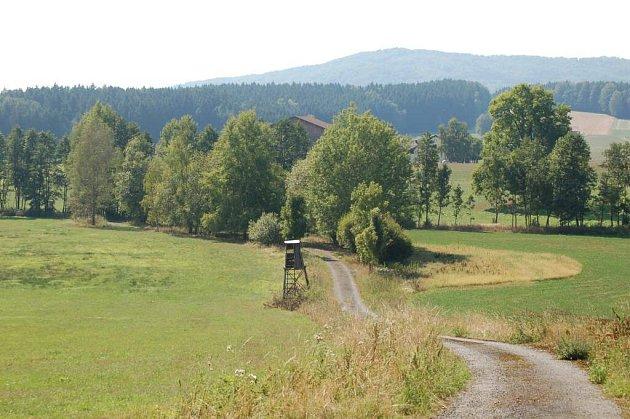 Z vycházky do zaniklé obce Slatiny a na maxovský hřbitov.
