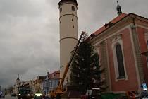 V Domažlicích už stojí vánoční strom