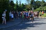 Běh přes Vorlíky 2020: start závodu. Foto: zula.