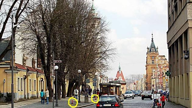DOMAŽLICKÉ ALEJE SE STALY  VČERA STROMOŘADÍM. Pahýly po pokácených stromech (dle rozhodnutí inspekce životního prostředí) jsou omotány červenobílou páskou, pro větší zřetelnost jsme je žlutě označili.