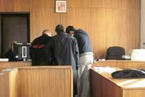 Řidič, který se na přechodu míjel s kamionem obžalovaného, popisuje u soudu  situaci.