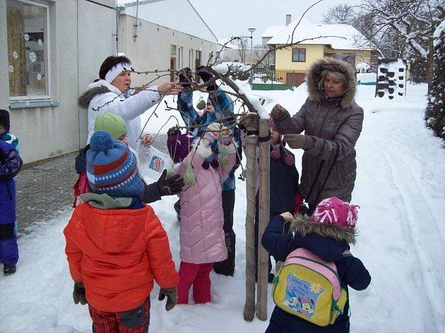Předškoláci z Horšovského Týna rozvěšují s učitelkami vlastnoručně vyrobené lojové koule se semeny.