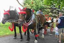 Bryčka tažená párem krásně ustrojených koní provážela celé odpoledne místní občany, rodáky i přátele obce při oslavách v Nové Vsi