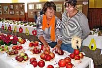 NELZE JEN VIDĚT A NEPŘIVONĚT. Tato jablka zaujala také Marii Borovou a  Janu Huttovou ze Spáňova.