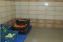 SKLAD ZELENINY v suterénu byl opraven v loňské etapě.