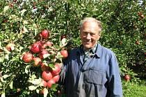 Úroda jablek je letos náramná, říká Alois Hoffman.