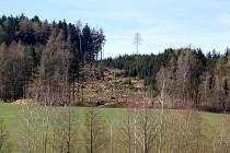 V Pasečnici spadlo na jednom místě 700 kubíků dřeva.Paseka bude znovu zalesněna příští rok