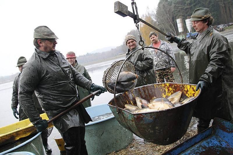 Výlov rybníku v Mezholezích.