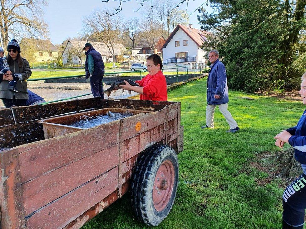 V Libkově se konal výlov rybníka na návsi.