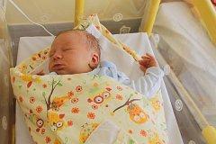 ŠIMON KOHOUT z Chocomyšle (4300 g a 55 cm) se narodil 17. března v devět večer v Domažlické nemocnici Evě Kohoutové a Ladislavu Kohoutovi. Na bratříčka se doma těšil malý Ladislav.