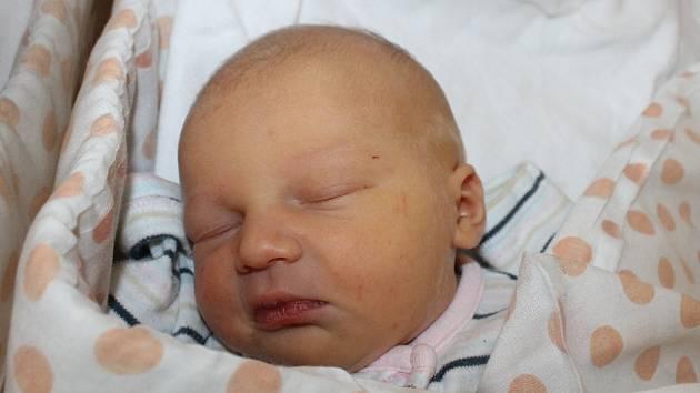 Taťána Prajzentová z Horšovského Týna se narodila v domažlické porodnici 7. prosince v 10.33 hodin (2880 g, 47 cm).