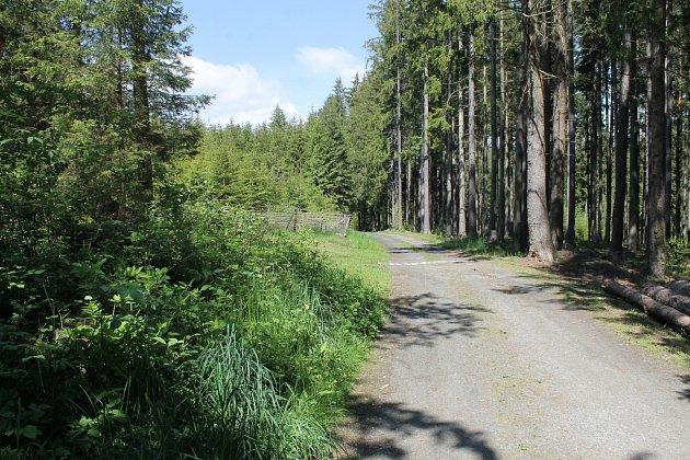 Přírodní park Zelenov.