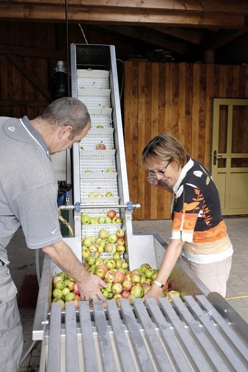Nový drtič jablek v pálenici ve Starém Klíčově.