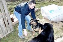 Psí nalezenci jsou stále v Nemanicích a stará se o ně obec. Jsou kamarádi i s nemanickým úředníkem Pavlem Dofkem.