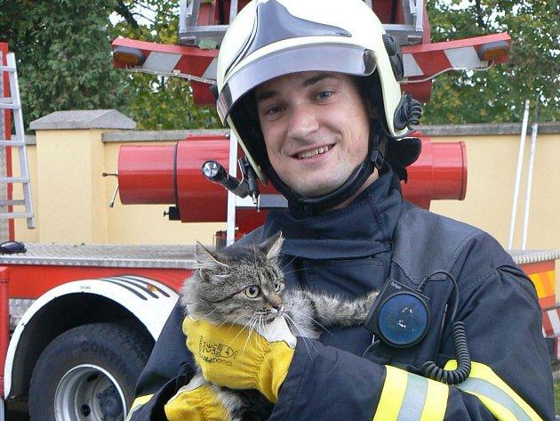 Radek Dopirák zachránil kočku, která strávila v korunách vzrostlého stromu tři dny.