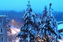 Pracovníci domažlických technických služeb se soustředili na likvidaci sněhu z ulic a chodníků. težkým snehem olámané větve stromů odklidí dodatečně.