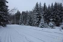 Lyžařské stopy pod Čerchovem jsou v dobrém stavu. Otázkou je, co přinese přicházející obleva.