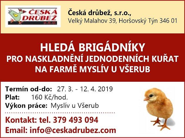 Česká drůbež
