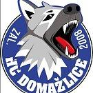 Nové logo HC Domažlice.