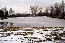 K rybníku v Novém Kramolíně přibyly tůně.