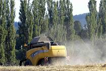 LETOŠNÍ ŽNĚ NEJSOU NIC DOBRÉHO PRO ZEMĚDĚLCE. Za kombajny se jednak velice práší, kombajnéři i ti, kteří úrodu odvážejí z pole, museli a ještě budou muset přestát nepříjemná tropická vedra.