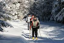 Čerchovské lesy projíždí na lyžích sportovci a turisté z obou stran hranice.