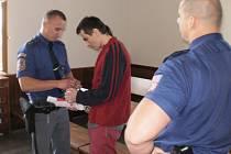 Miroslav Johánek je jedním ze dvou obviněných, kteří se měli dopustit porušování domovní svobody a vydírání.