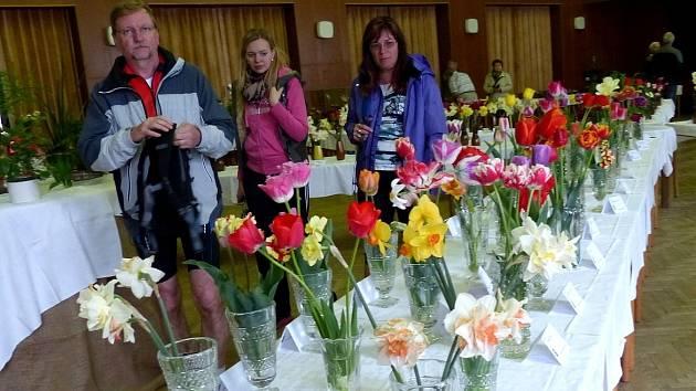 PASTVA PRO OČI. Návštěvníci výstavy Jaro na zahradě mohli obdivovat nádherné květy, z nichž řadu viděli mnozí poprvé v životě.