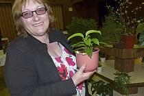 Františka Hollarová s jedním z 52 druhů voskovek, které pěstuje.
