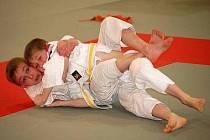 Ilustrační snímek - judo.