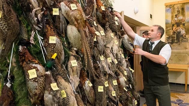 Hospodář Jakub Hoffmann upravuje v předsálí ceny do tomboly – bažanty a kachny.