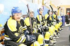 Ilustrační snímek z utkání hokejistů HC HP Sršni Domažlice.