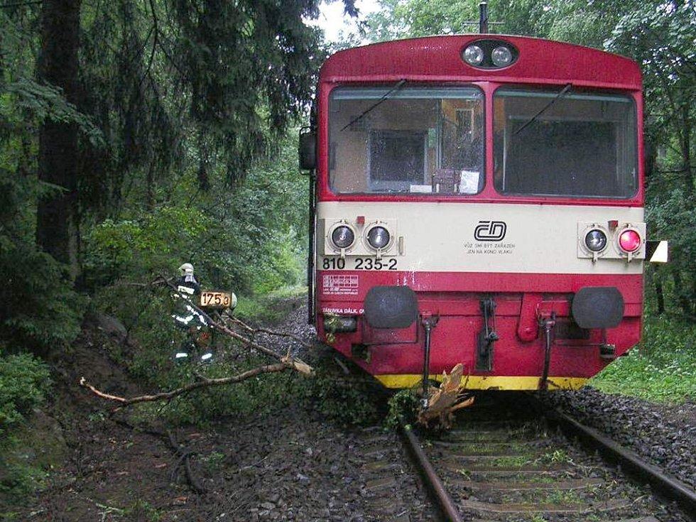 Padlý strom zastavil dopravu na trati Babylon - Domažlice
