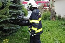 VOSÍ HNÍZDO hasiči odnesli v igelitovém pytli.