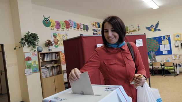Krajské volby v domažlické škole.