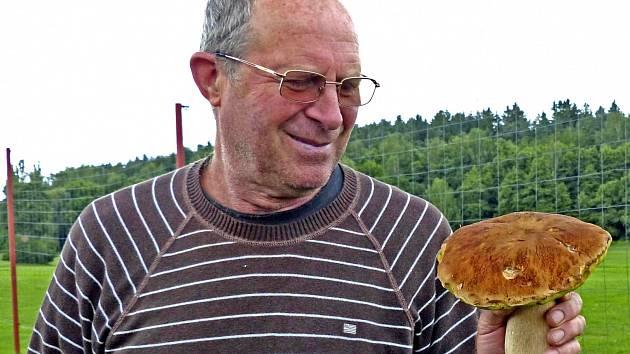 """HŘIB JAKO MALOVANÝ. Jan Sisek z Domažlic našel tuto nádhernou houbu ve čtvrtek odpoledne doslova za humny u Pece. """"Popravdě řečeno, ani jsem moc hledat nemusel. Už se těším na nějakou houbovou pochoutku, kterou mi z něj manželka připraví,"""" uvedl."""