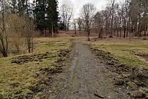 Tak to vypadá v zámeckém parku po nájezdu divočáků.