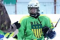 Ilustrační snímek ze zápasu hokejistů HC Sokol Díly.