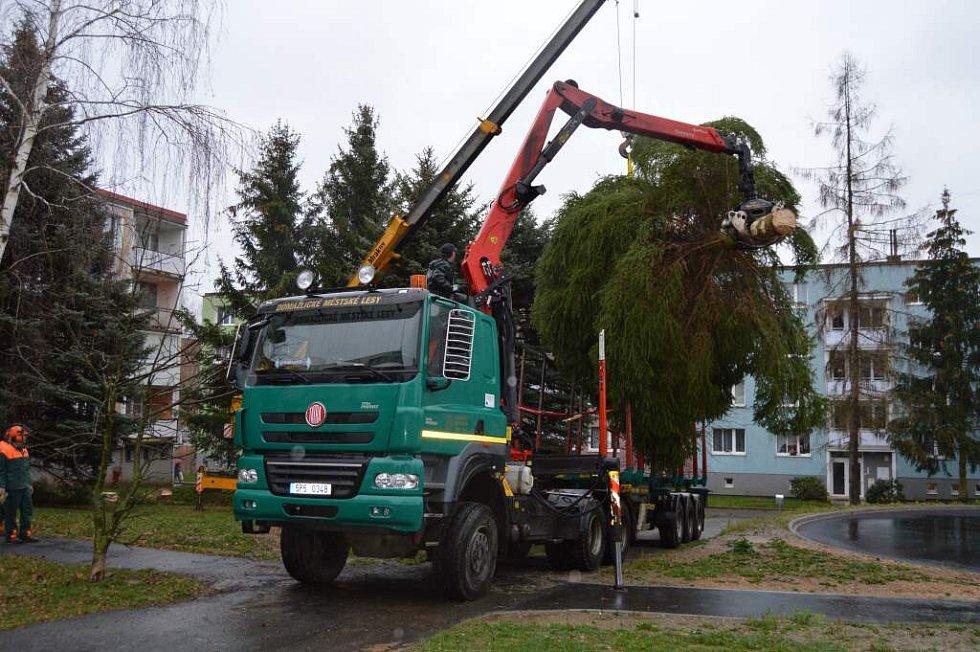 Kácení smrku na sídlišti Kozinovo Pole.