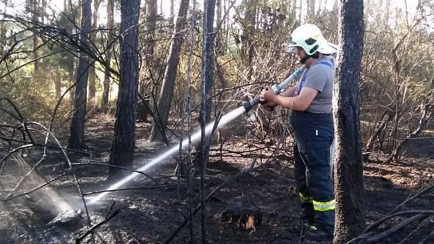 Z požáru lesa u Jivjan.