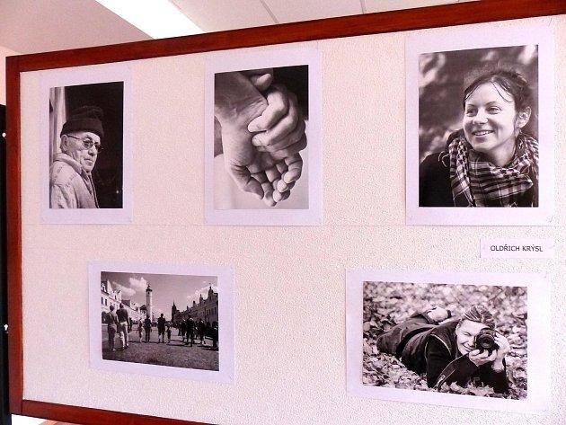 Panel sfotografiemi Oldřicha Krýsla na výstavě vdomažlickém penzionu.