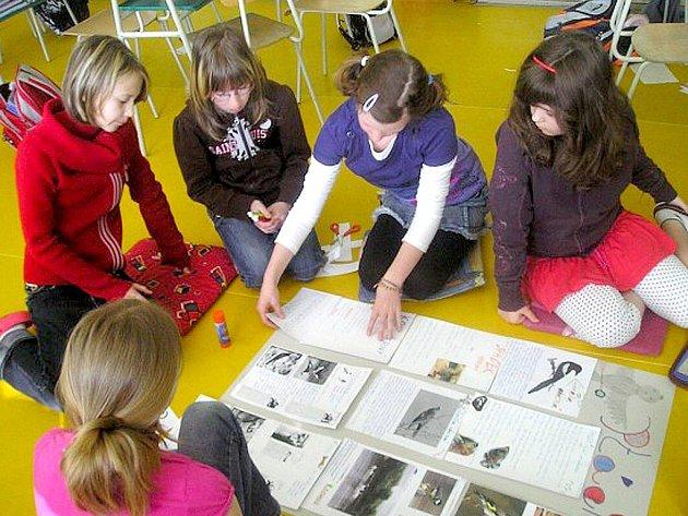 Žáci 4. B holýšovské základní školy pracují na přírodopisném projektu.