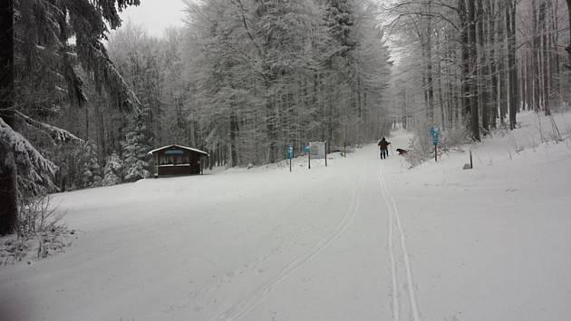 MILOVNÍCI LYŽOVÁNÍ vyrazili na běžecké trasy mezi Čerchovem a Gibachtem už ve středu.
