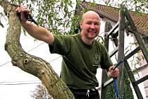 Pavel Weber využil podzimního slunného dne k úpravě okrasné vrby.