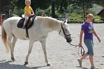 Nedávno se MAS Český les prezntovala veřejnosti 1. regionálním dnem, který uspořádala na koňské farmě ve Svržně.